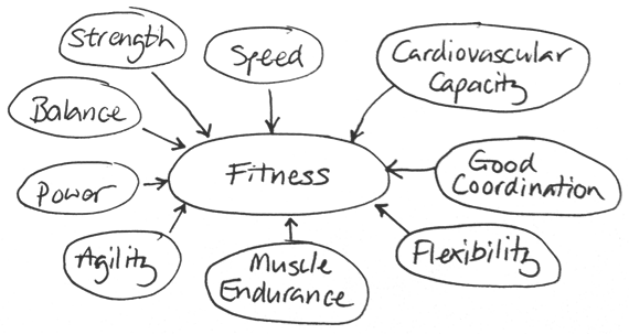 The Meaning Of Fitness